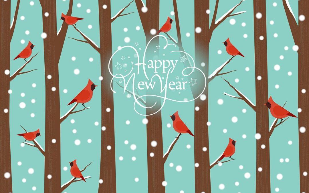 """Combien de fois dit-on """"bonne année"""" en janvier chaque année ?"""